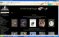 Bird Images Online
