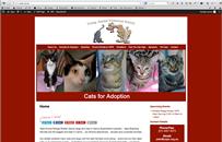Yaps Animal Rescue