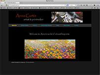 Anna Curtis Australian Artist