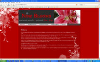 Nine Blooms - Cairns Floral Designs