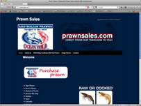 Oceanwild Prawn Sales  Buy Australian prawns & seafood online cairns fish shops