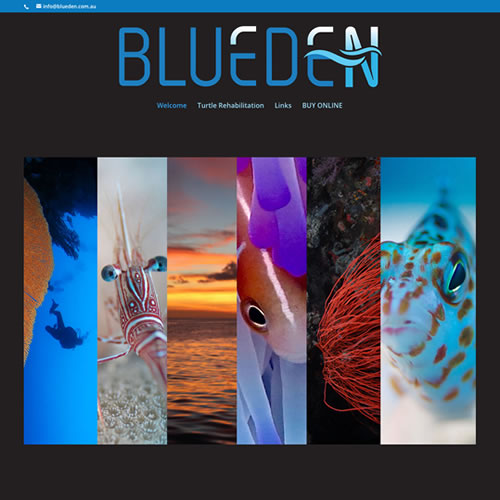 Blue Eden Photography