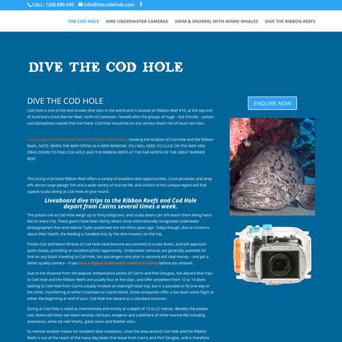 Cod Hole Tour Cairns